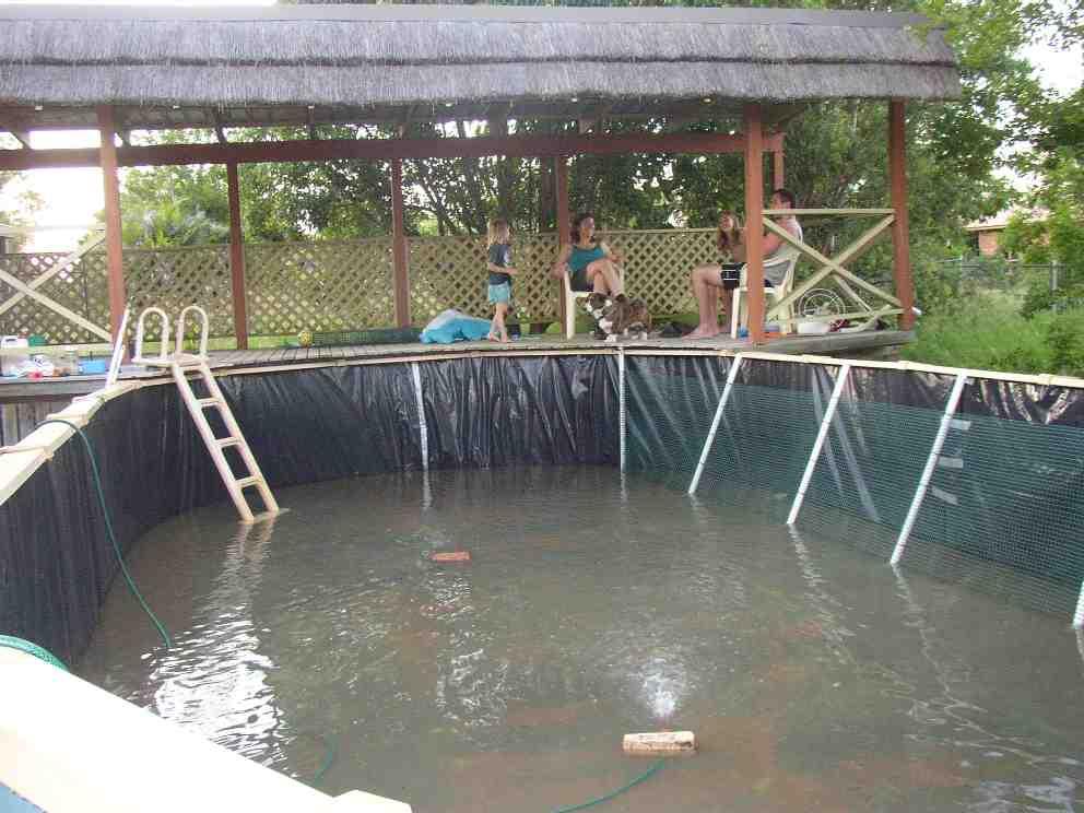 Undergravel filter for Garden pond no filter